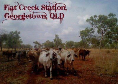 Flat Creek Station