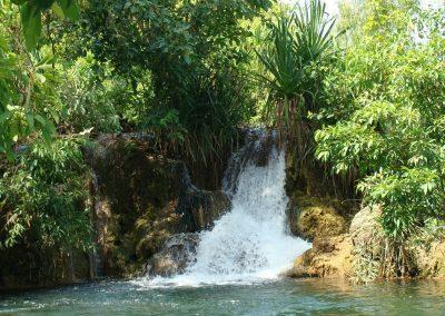 Flora River Nature Park